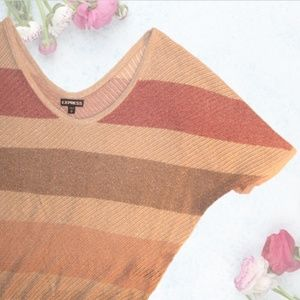 Express Metallic Striped Pullover
